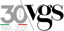 Vgs Logo 30 anni